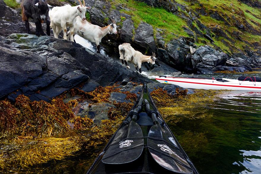 travel-kayak-photography-fjords-tomasz-furmanek-norway-16